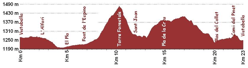 Perfil I Cursa Vistabella 2007